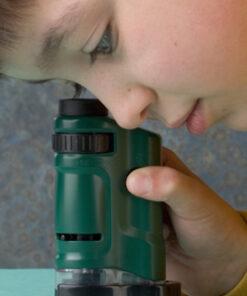 กล้องจุลทรรศน์